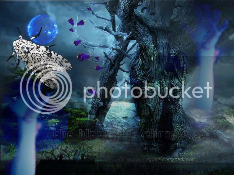 Step Into the Dark Waters of Moths Writings Darkforestcopyii
