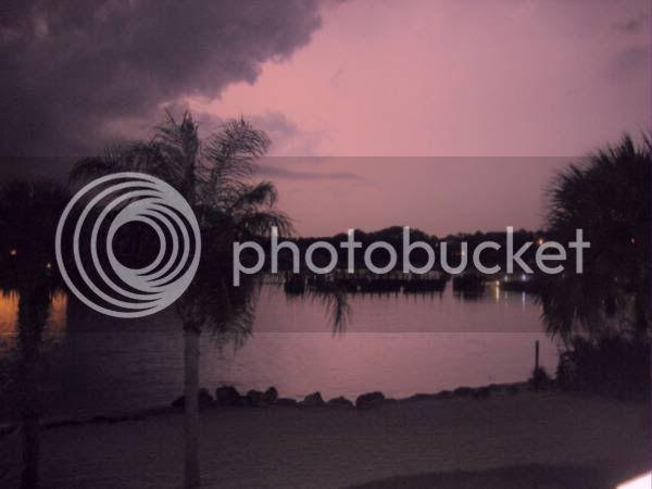 Poly pics! WDW_0056_7_18_23_12