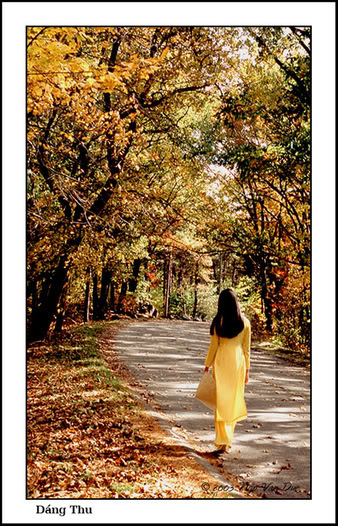 Tiếng thơ - Cây nhà lá vườn  Dangthu_4511-1