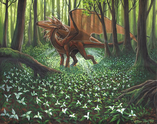image ! - Page 2 Dragon_In_Forest