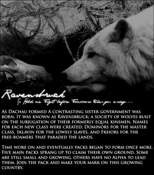 Ravensbruck RavensbruckAd1-3