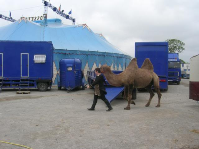 fossetts circus 2006 transport FOSSETTS2006025