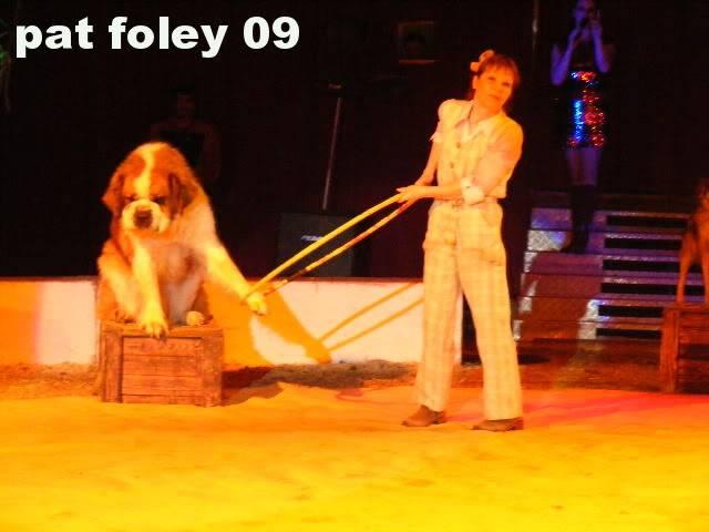 Great European Circus Athlone, 25/10/2009 D-4