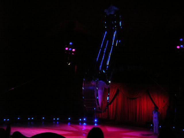 duffys circus 2008 Glanmire08336