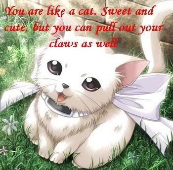 poor little kitty Cats-1