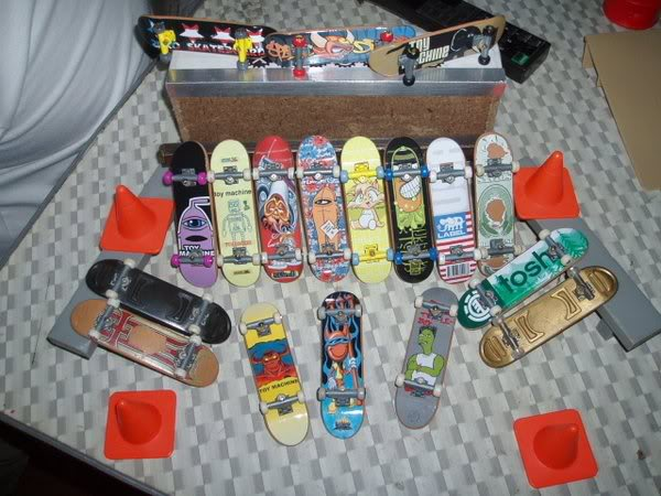 Tech Deck Collection P3210038