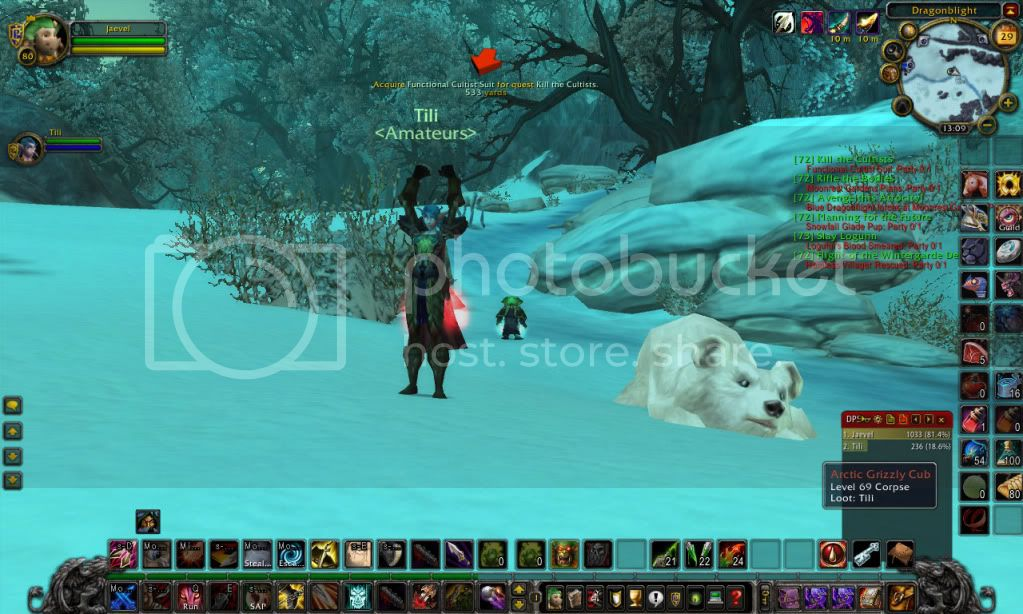 In game picture. WoWScrnShot_052909_131030