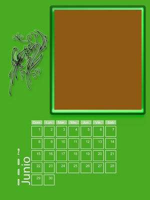 Calendario 2008 de 12 meses individuales 06-Junio