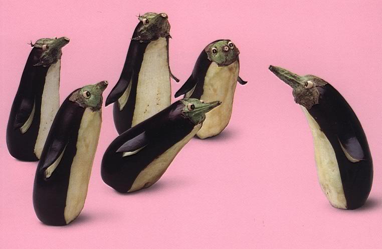 Minhas Imagens Maradas Pinguins