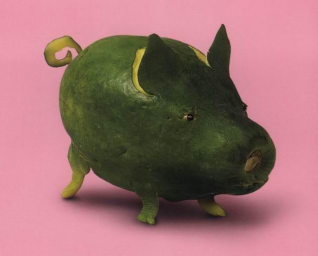 Minhas Imagens Maradas Porco