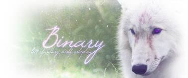 Binary // sci-fi fantasy wolf roleplay Binad