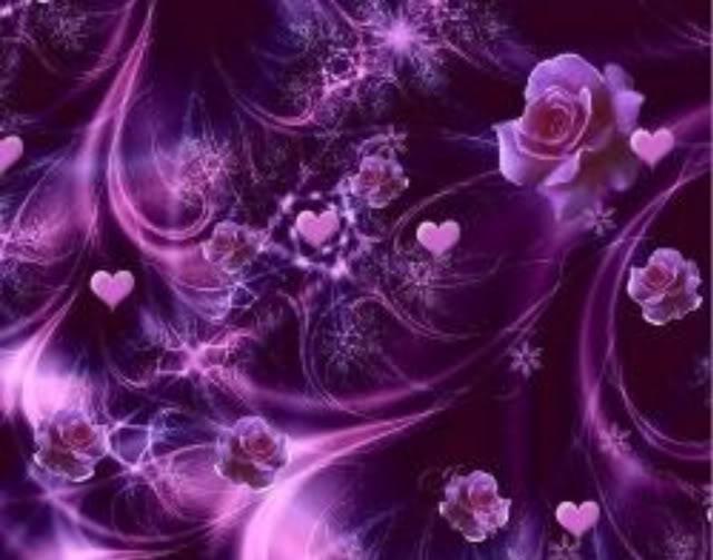 خلفيات ملونه فلاشيه Purple_Roses