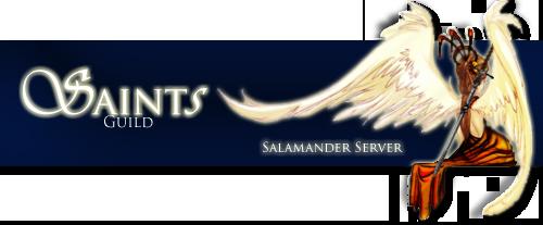 Saints Graphics Estecopycopy