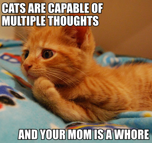 Your Mom Cats_are_capable_of_multiple_thoughts_trollcat