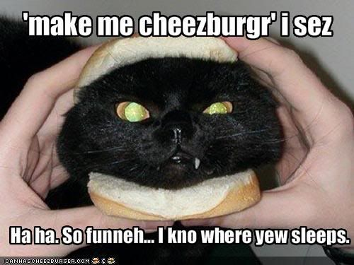 Photo Gallery of Absolute Randomness - Page 6 Funny-pictures-angry-cat-knows-where-you-sleep