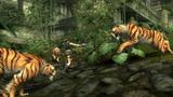 Tomb Raider: Underworld (2008) FAQs & Info Th_TRUScreenshot005
