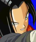 Dragon Ball  Collection 17