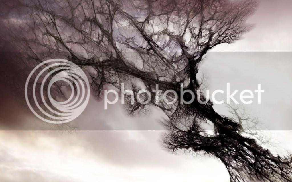 Tetsu Tree