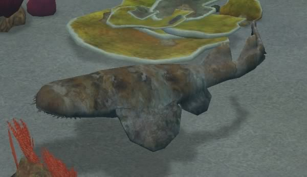 Topics tagged under shark on User - Made Creations Wobbegong1