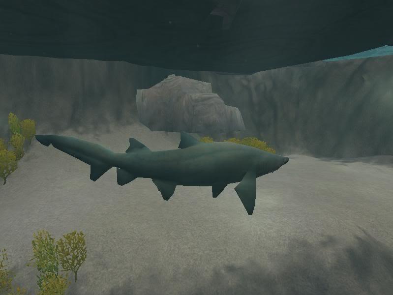 Topics tagged under shark on User - Made Creations Sandtiger2ny2