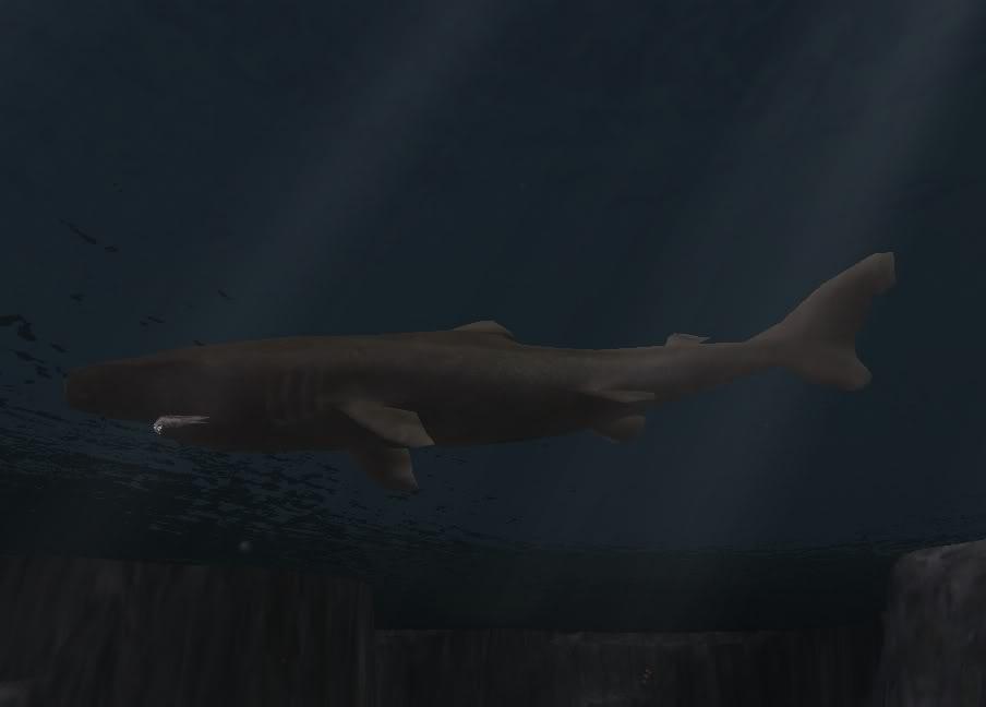 Topics tagged under shark on User - Made Creations Sleeper2