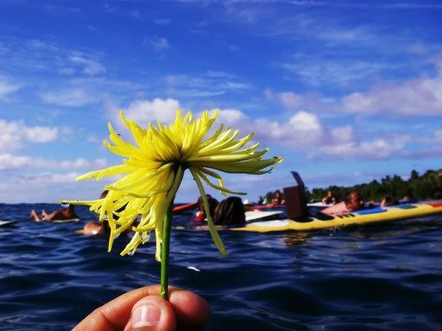 *Fotos del paddle out en Tres Palmas* IMGP2932