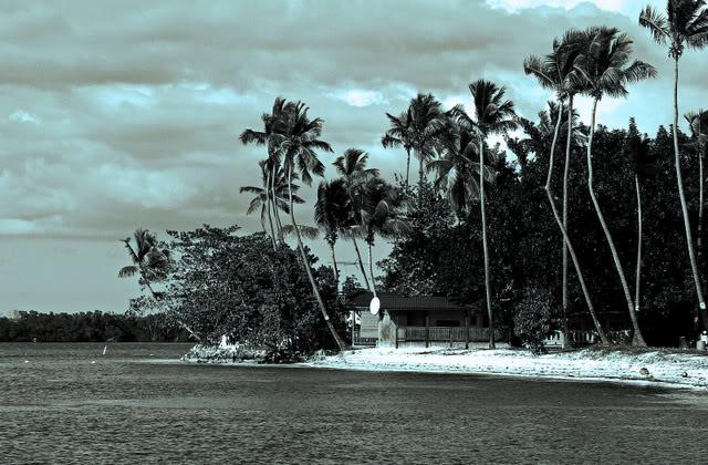 Lo lindo de Puerto Rico en Blanco y Negro... P1300680