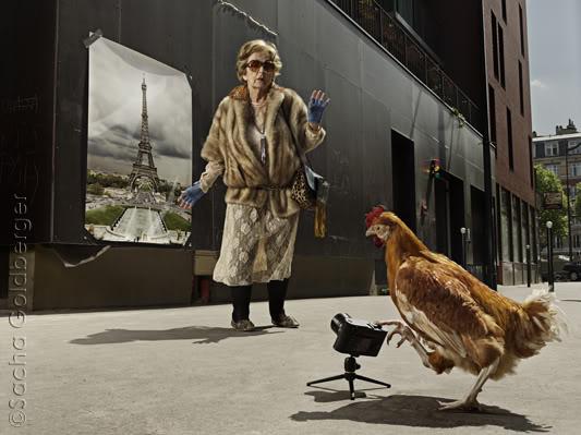 Старость не радость - Страница 2 Paris