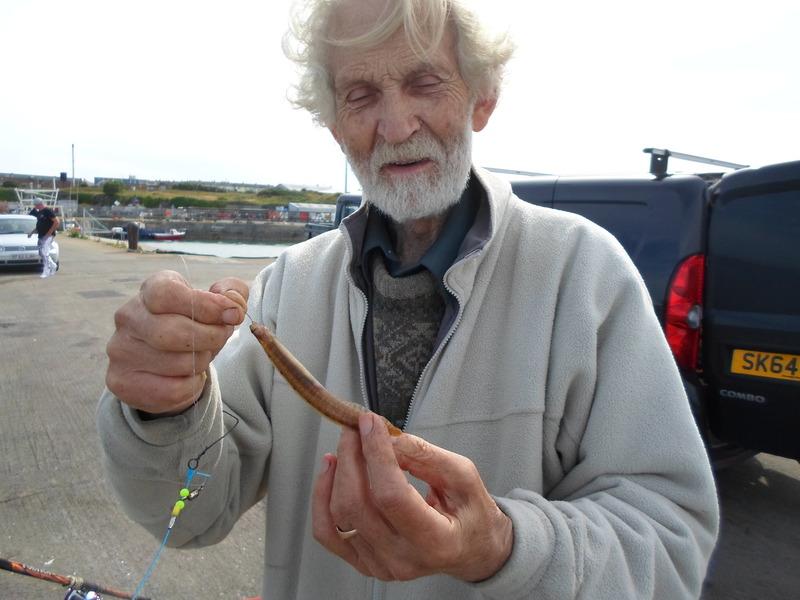 Holyhead fish dock SAM_0228%20-%20Copy%202