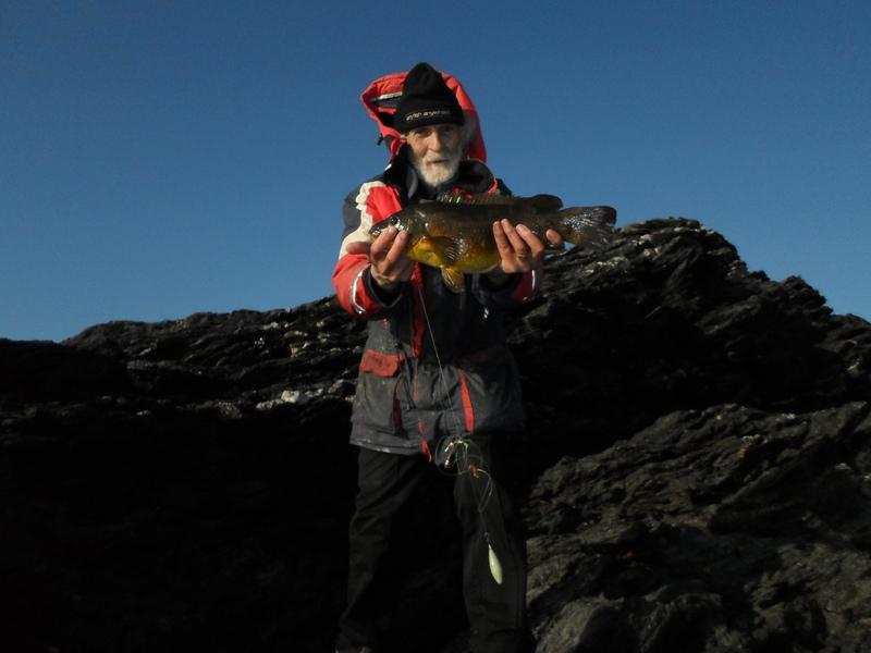 Specimen fish SAM_0335