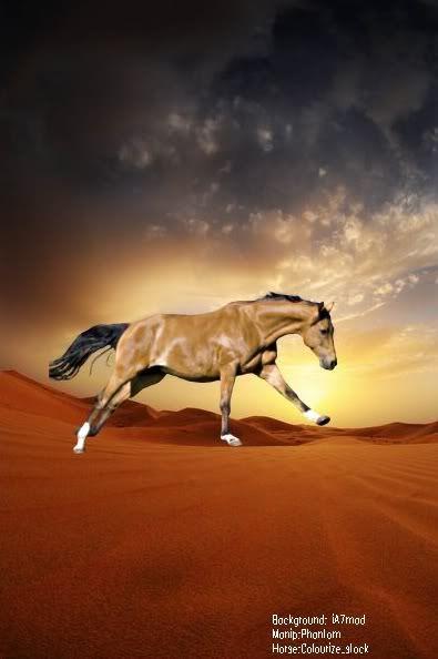 Manipulations Desert_Fantasy_I_by_iA7mad