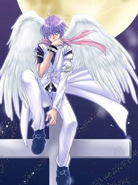 Ikari Arashi AngelBoy
