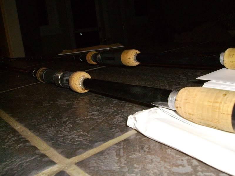 Split Gripping Fishing Rods SANY0376