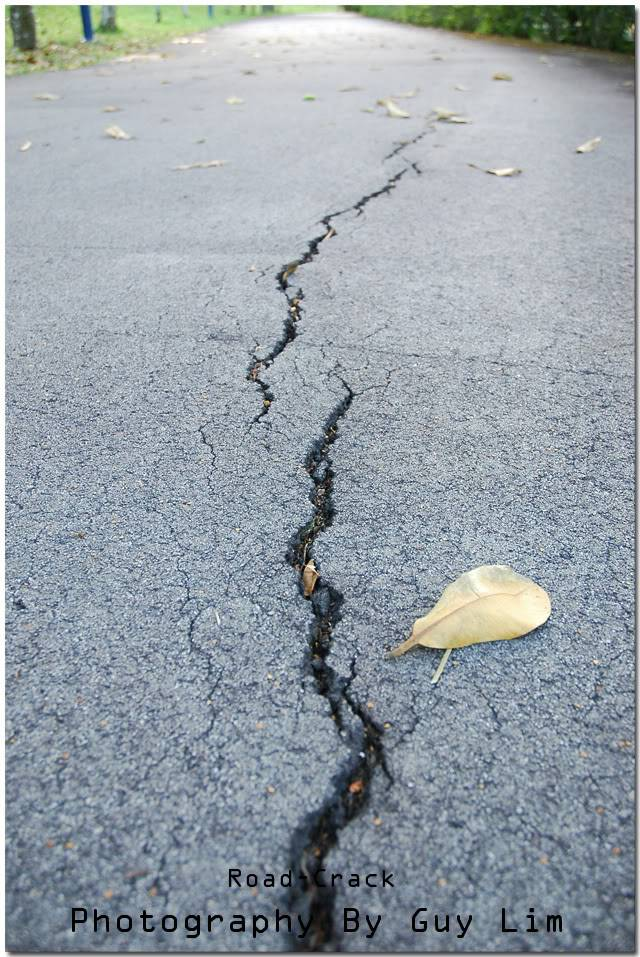 crack road Roadcrackbyguylim