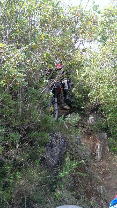 El Bosque con roadbook IMG-20140309-WA0025_zpsbe046bf2