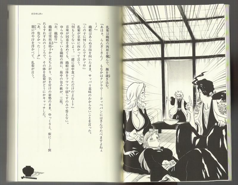 Bleach Books, les ouvrages indispensables. HDR2