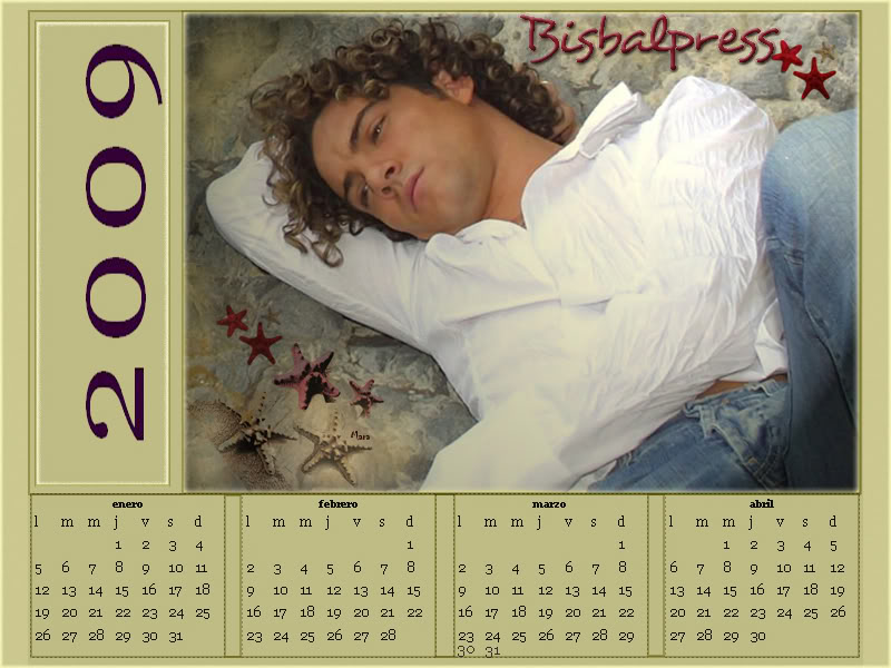 POSTERE, CALENDARE  SI WALLPAPERS CU DAVID BISBAL Calendar