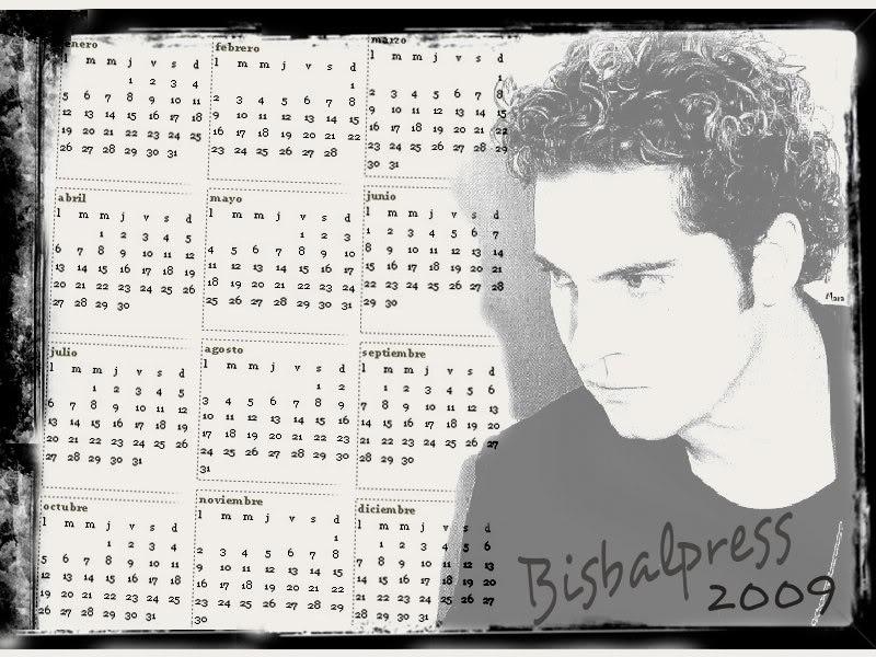 POSTERE, CALENDARE  SI WALLPAPERS CU DAVID BISBAL Calendar2