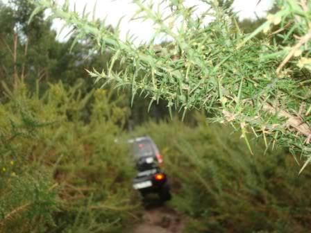"""My TT black Jimny """"NEW Upgrade"""" - Página 2 DSC06332"""