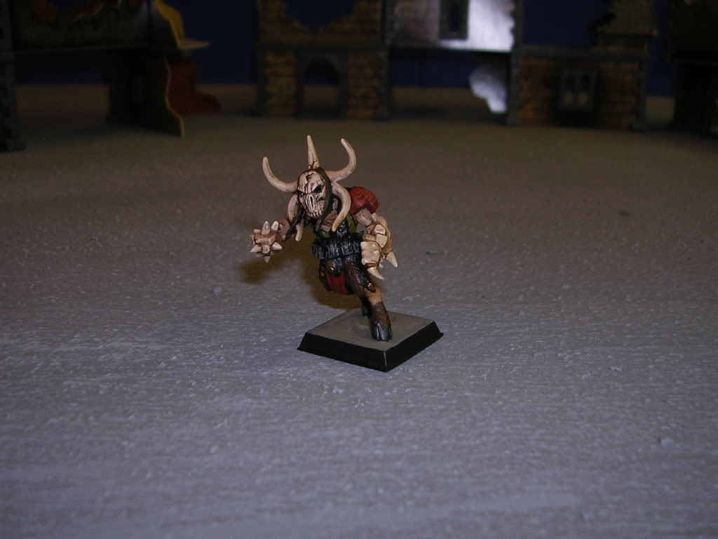 Ironbull's Painted Warbands DSCN1301