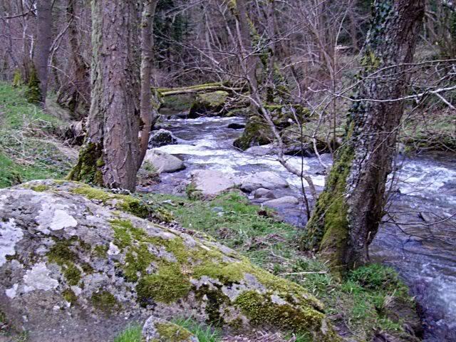 Rando en Auvergne N14redi