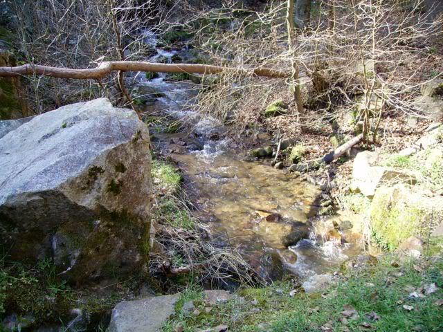 Rando en Auvergne N2redi