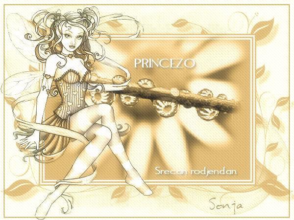 Princeza Princeza