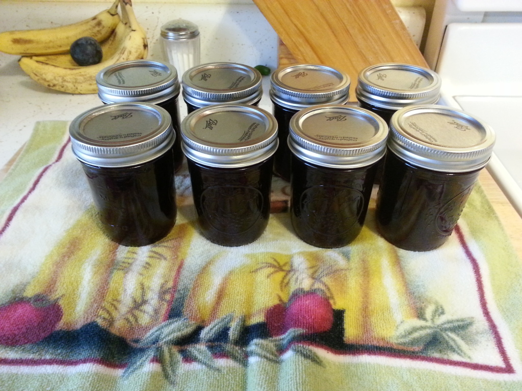 Canning & Preserving: Plum Jam Recipe 20120826_162959