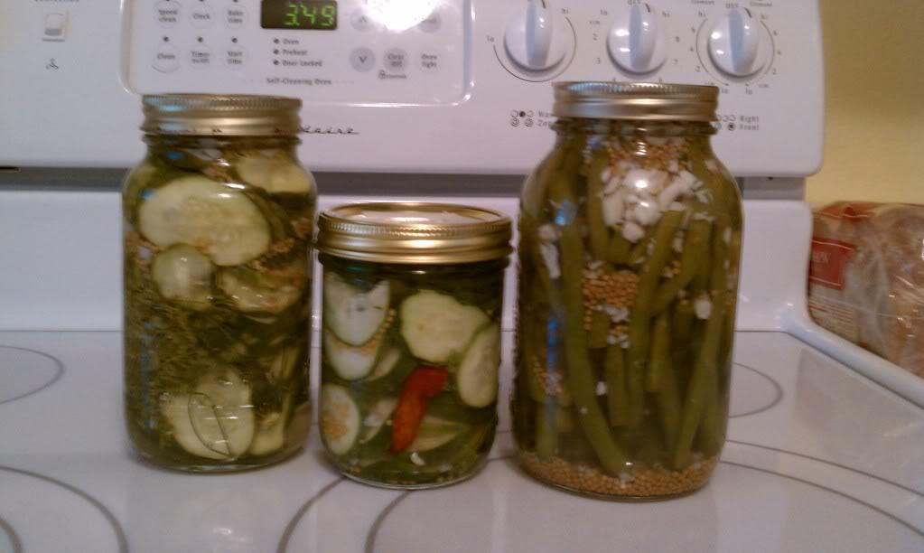 Freezer Pickles IMAG0070