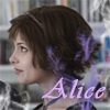 Les proches de Sethounet :P AliceCullen
