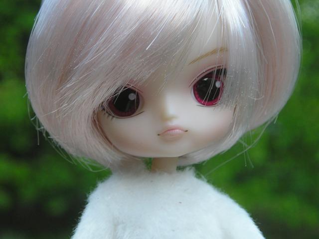 Complete mini Dal catalog Kyubey5