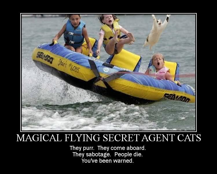 Funny, Strange and Random Pics - Page 2 Magic_Cats