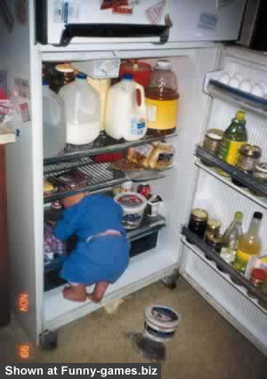 Tủ lạnh của quê hương Fridge
