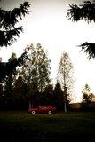 "ripa: Jetta Mk2 CL ""Coupe"" & Passat 35i G60 Syncro Th_Jettaa"
